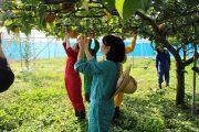 食の恵みに感謝!!:食環境生産教育実習[三日目]
